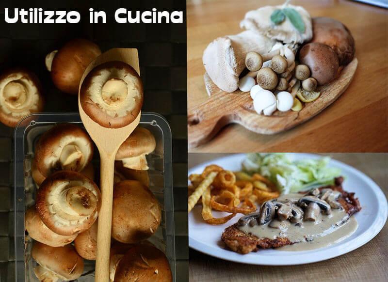 Utilizzo dei Funghi in Cucina